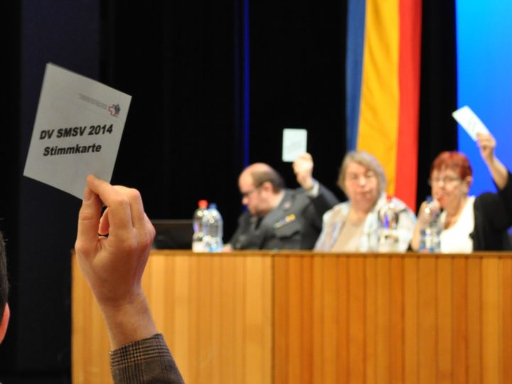 133. Delegiertenversammlung 2014 des SMSV